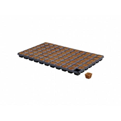 HGA GARDEN - EAZY PLUG VASSOIO 77pz | 3,5x3,5x4h cm