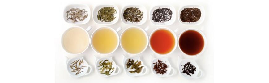 TISANE TEA CBD