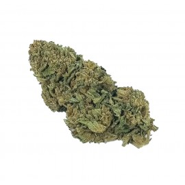 SKUNK 0.2% THC
