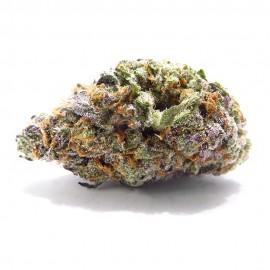 STRAWBERRY >11% CBD  |  5 GR