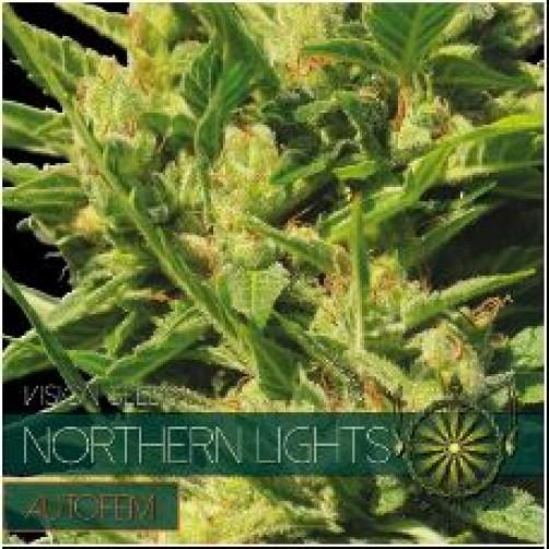 NORTHERN LIGHTS AUTOFEM 10 SEMI