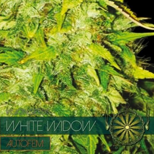 White Widow AutoFem 10 SEMI