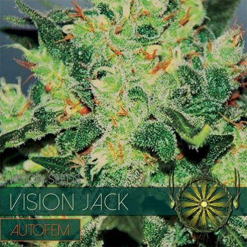Vision Jack AutoFem 10 SEMI