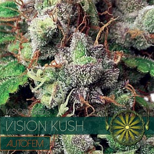 Vision Kush AutoFem 10 SEMI