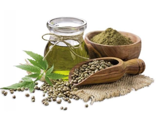 Le stupefacenti proprietà nutritive della canapa nell'alimentazione quotidiana