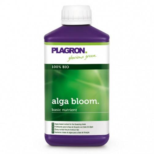 ALGA BLOOM PLAGRON